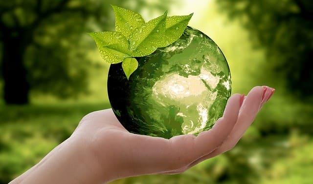 Эколог